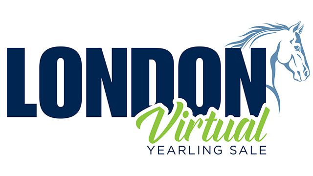 """Featured image for """"London Virtual Yearling Sale Ends Today"""""""