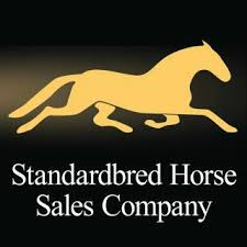 """Featured image for """"Standardbred Sale To Return To Harrisburg"""""""