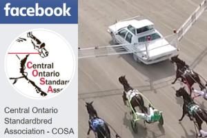 Follow COSA on Facebook